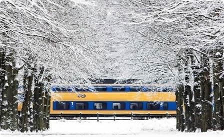 ns_winter-detail